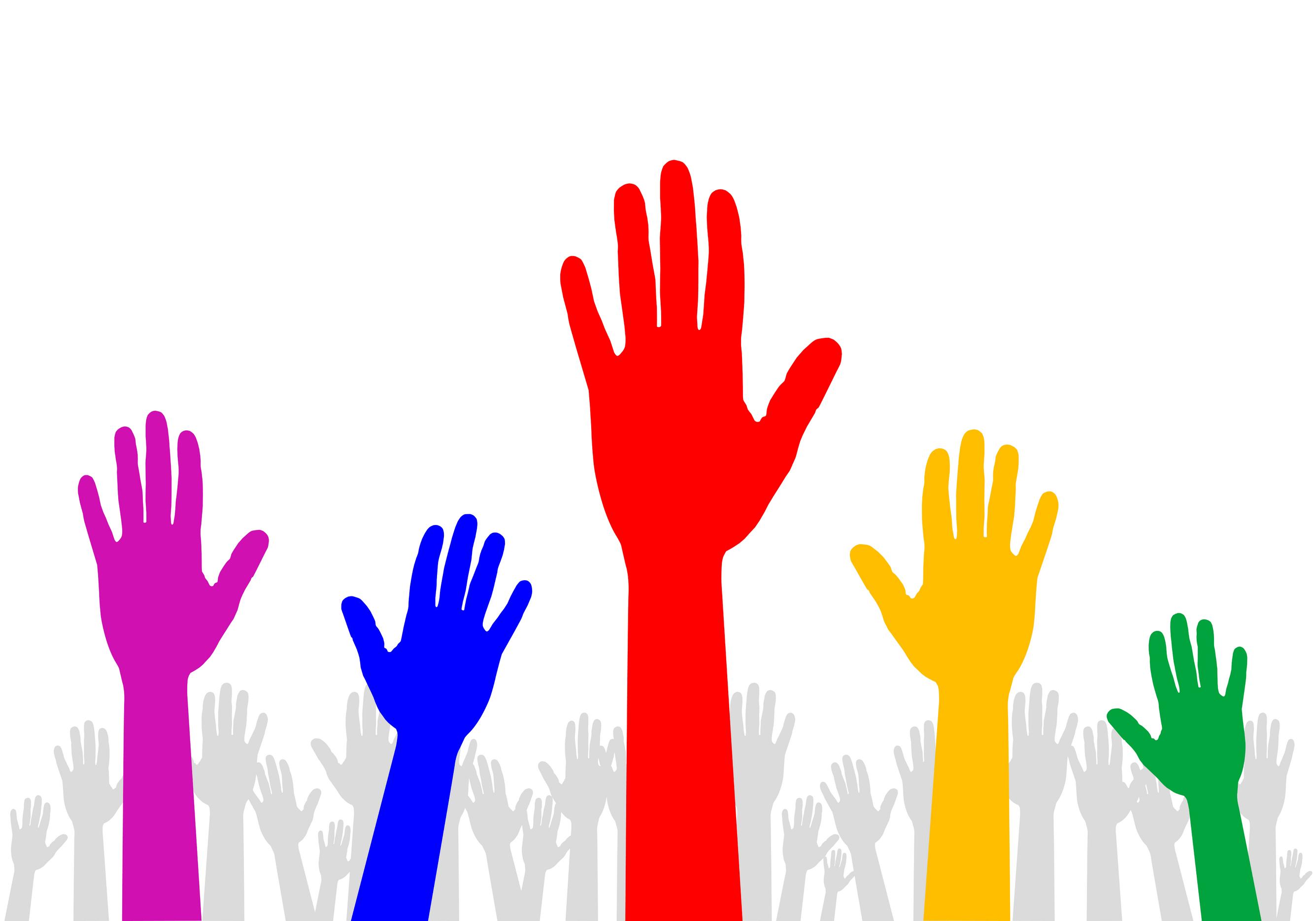 wolontariusze13